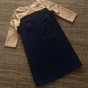 Dresses & Skirts - Gap work dress looks great! Lined!!!